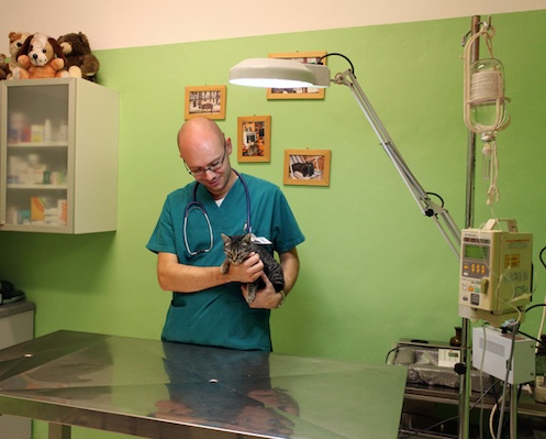Loris Barale veterinario